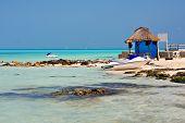 Tropical Caribbean Beach Shore