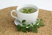 Jiaogulan Tea  /Gynostemma Pentphyllum/