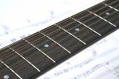 12 String Guitar Closeup Of Neck