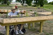 Handicapped Gardener