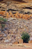 image of dogon  - Ancient Dogon and Tellem houses on the Bandiagara escarpment in Mali with sheep - JPG