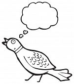 funny pheasant cartoon
