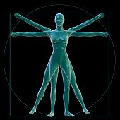 Vitruvian woman on black