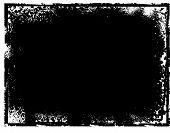 Tarjeta de la nota de Grunge