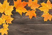 Yellow Autumn Maple Leaves On Dark Brown Wooden Background With Copy Space For Text Or Design. Fall  poster