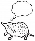 shrew illustration with thought bubble