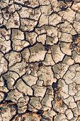 Dry Desert Land Texture As Background, Top View Of Mud Cracked Land During Drought Season poster