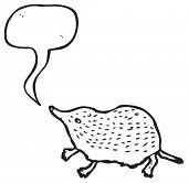 cute shrew illustration