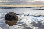 Moerakis huge round boulder on a sandy beach. The Pacific ocean tide begins. New Zealand. The suns poster