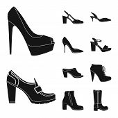 Vector Design Of Footwear And Woman Symbol. Collection Of Footwear And Foot Stock Vector Illustratio poster