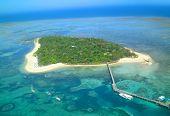 green island,austraria