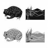 Vector Illustration Of Wildlife And Bog Icon. Set Of Wildlife And Reptile Stock Vector Illustration. poster