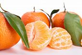 stock photo of clementine-orange  - isolated clementine and leaf on white - JPG