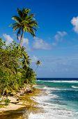Costa de la isla de San Andrés en Colombia