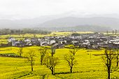 Rural landscape in China