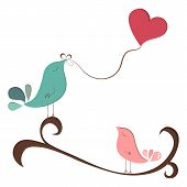 Beautiful Birds In Love