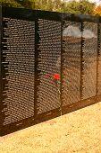 Rose At Vietnam Wall