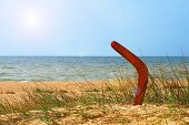 Landscape With Boomerang On Overgrown Sandy Beach.