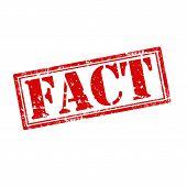 Fact-stamp