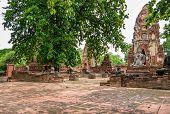 Buddha Statue In Wat Mahathat, Thailand.