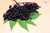 pic of elderberry  - Therapeutic healthy elderberry fruits on wooden background - JPG