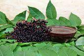 Sambucus Nigra Fruit