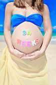Pregnant Woman At Beach