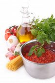 tomato sauce and ingredient