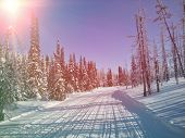 Snowmobile Trail in Labrador Canada - Instagram effect