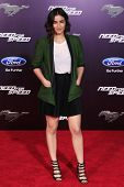 LOS ANGELES - MAR 6: Alanna Masterson at the premiere of DreamWorks Pictures' 'Need For Speed' at TC