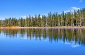 Perfect reflections in yellowstone national park