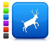 Deer Jumping Icon on Square Internet Button Collection