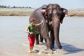 Woman Plays With Elephant In River