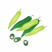 stock photo of okras  - Vegetable and Herb Vector Illustration of Fresh and Sliced Okra or Lady Finger - JPG