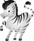 Illustration of a Cute Zebra Raising its Left Front Hoof