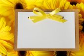 Message Card With Yellow Gerberas