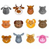 Wild and domestic animals collection