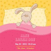 Baby Shower or Arrival Card - Sleeping Bunny -  in vector