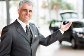 pic of showrooms  - handsome senior vehicle salesman presenting new cars at showroom - JPG
