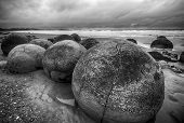 Moeraki Boulders on the Koekohe beach, Eastern coast of New Zealand. HDR image, black and white