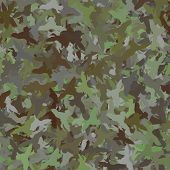 Duck Camouflage - Green / Brown