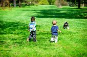 Two Young Boys At A Park Approaching A Dog