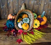 image of cornucopia  - A bountiful cornucopia with squash gourds pumpkins wheat and leaves on an old antique table - JPG