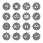 Medicine web icon set 2, grey circle buttons