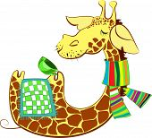 Cute giraffe got flue