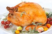 picture of kumquat  - Roasted turkey on tray garnished with red grapes figs kumquat and herbs over white background - JPG