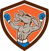 Donkey Boxing Celebrate Shield Cartoon