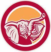 Elephant Head Tusk Circle Retro