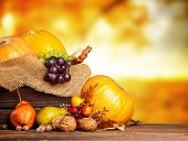 picture of wooden crate  - Seasonal harvested agriculture products in wooden box with blur background - JPG