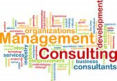 Management Consulting Word Cloud
